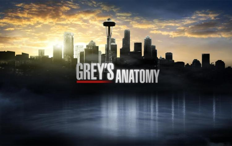 Greys Anatomy 2