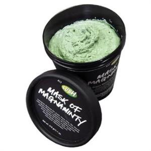 Fav Buys - Feb for Jan - Lush Mask of Magnaminty