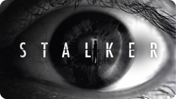 Stalker Logo 1