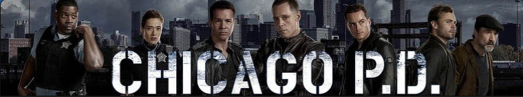 Chicago PD Logo