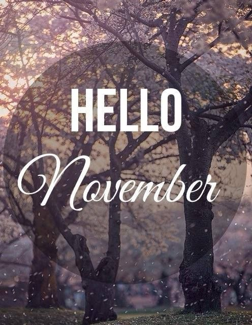 November Pic