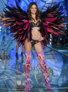 VS - 2015 - Exotic Butterlflies - Barbara Fialho