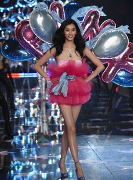 VS - 2015 - Pink Section - USA Angels - Ming Xi