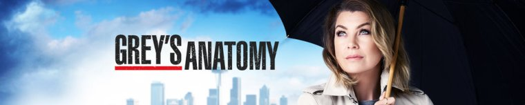Greys Anatomy - Banner 3