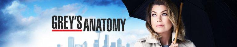 greys-anatomy-banner-3